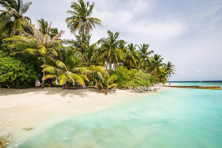 Bandos_island-hochzeiten-heiraten-Malediven-6