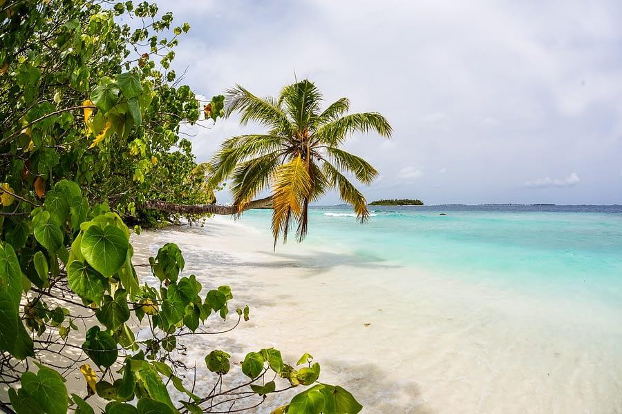 Bandos_island-hochzeiten-heiraten-Malediven-33