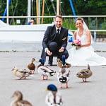Hochzeitspaar mit Ente