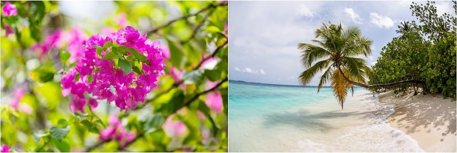 Bandos_island-hochzeiten-heiraten-Malediven-51