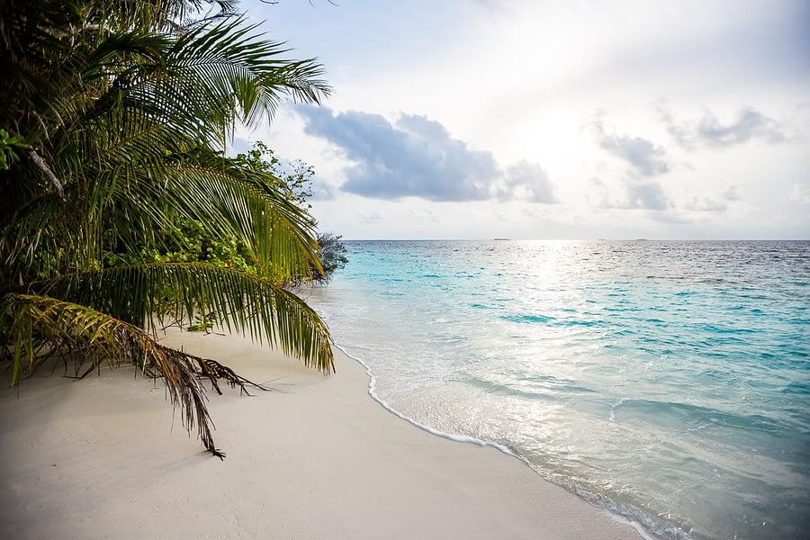 Bandos_island-hochzeiten-heiraten-Malediven-28